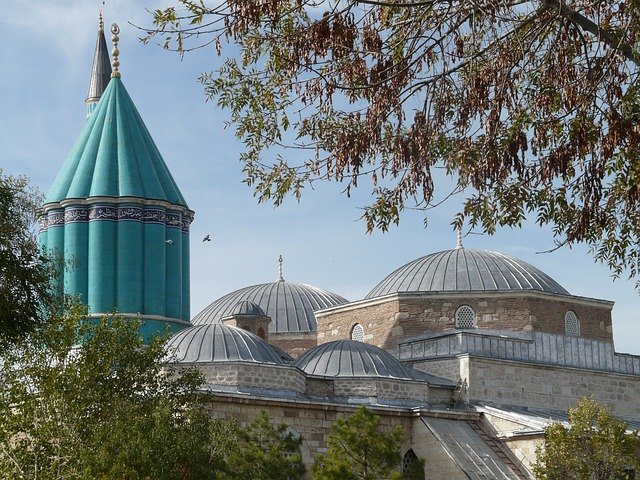 Mevlana Üniversitesi Ekşi